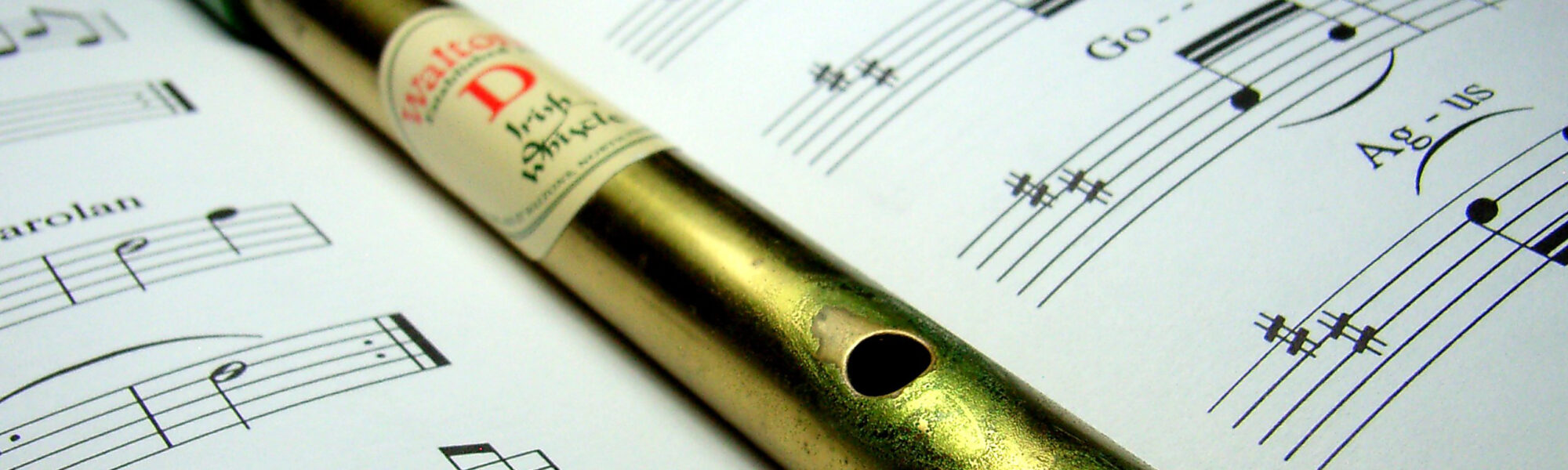 Un Tin Whistle - chidorian - cc