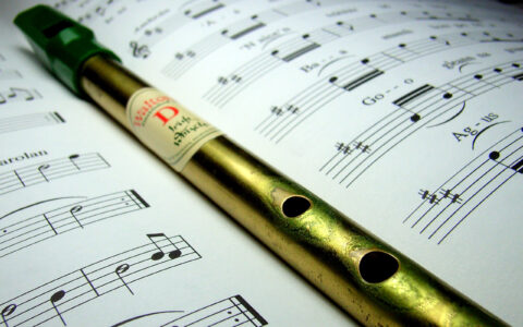 Le Tin Whistle