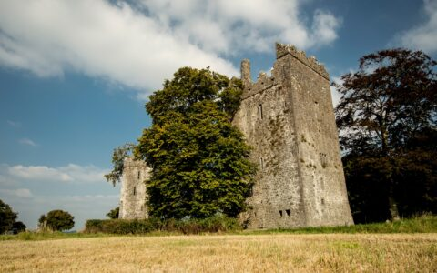 Le Burnchurch Castle - Simonak - cc