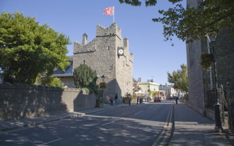 Le Dalkey Castle - William Murphy - cc