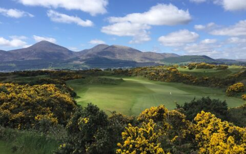 Le Royal County Down Golf